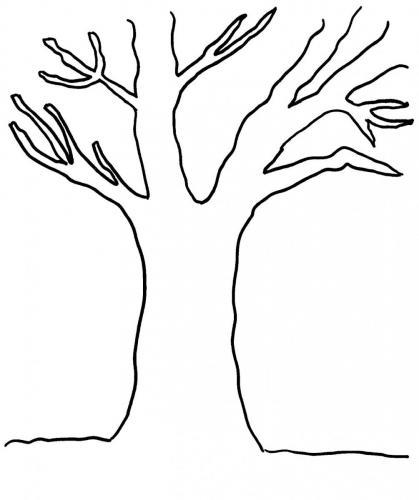 disegni albero