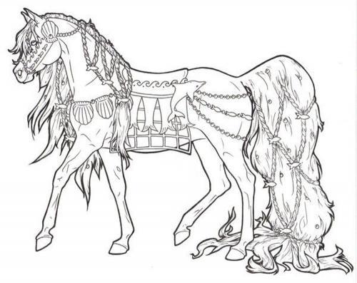 disegni cavalli da colorare a matita