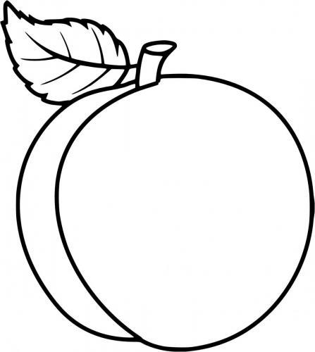 disegni della frutta
