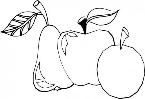frutta di autunno