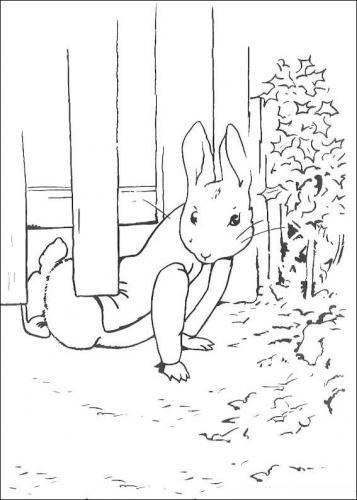 Disegni coniglietti
