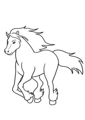 disegni da colorare cavallo
