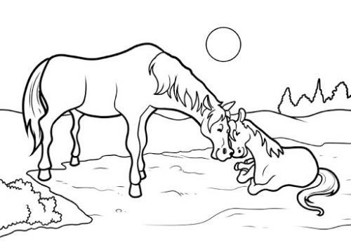 disegni da colorare dei cavalli