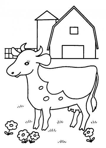 mucca in fattoria