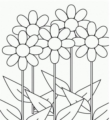 disegni da colorare di primavera