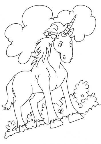 disegni da colorare di unicorni