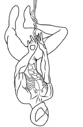 disegni da colorare e stampare spiderman