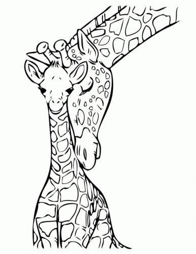 disegni da colorare giraffa pdf