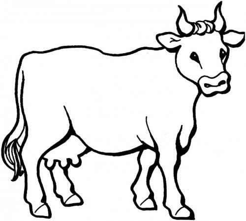 mucca stilizzata