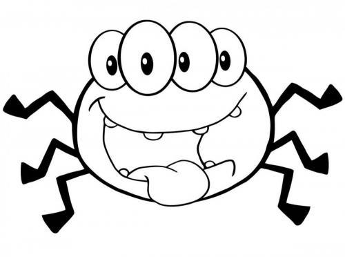 ragno con quattro occhi