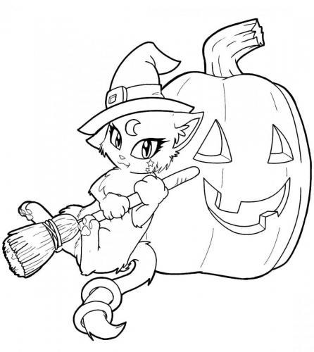 gatto vestito da strega