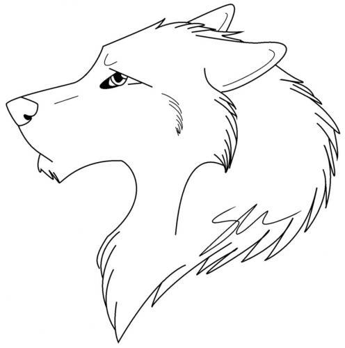 disegni da colorare lupo