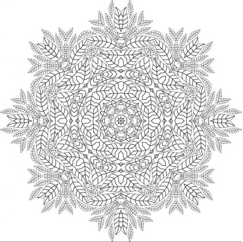 disegni da colorare mandala per adulti