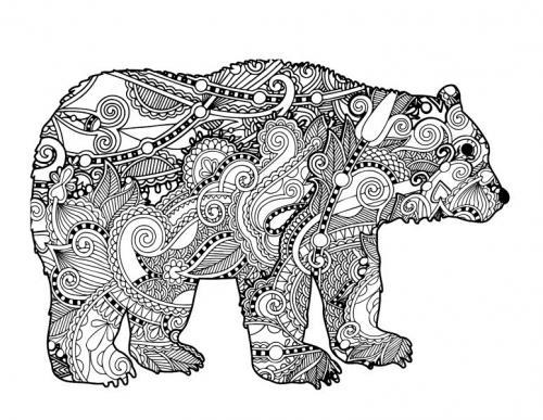disegni da colorare orsi