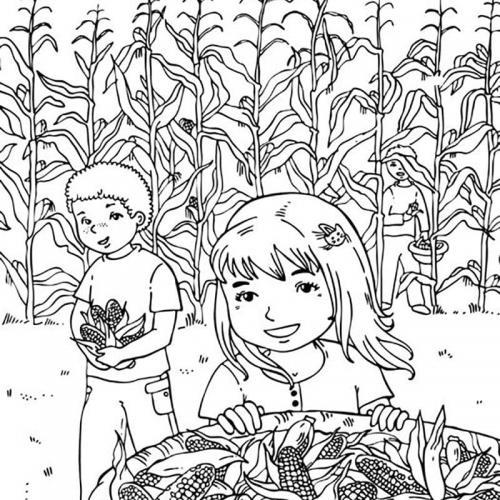 disegno campo in autunno