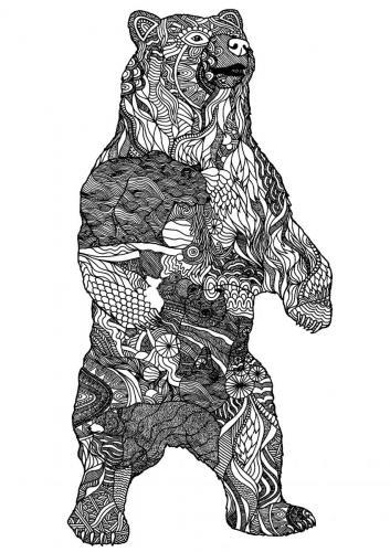 disegni da colorare per adulti orsi