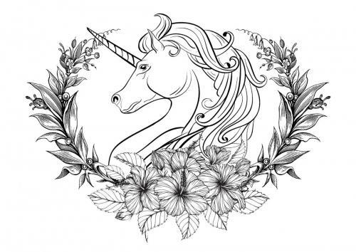 Immagini Di Unicorni 72 Disegni Da Stampare E Colorare A Tutto