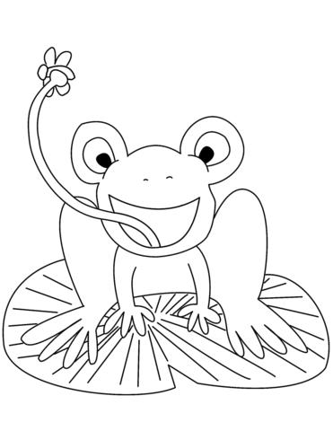 disegni da colorare rana