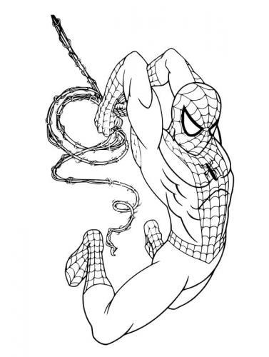 disegni da colorare spiderman nero