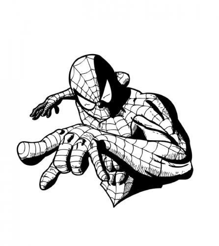 disegni da colorare spiderman per bambini