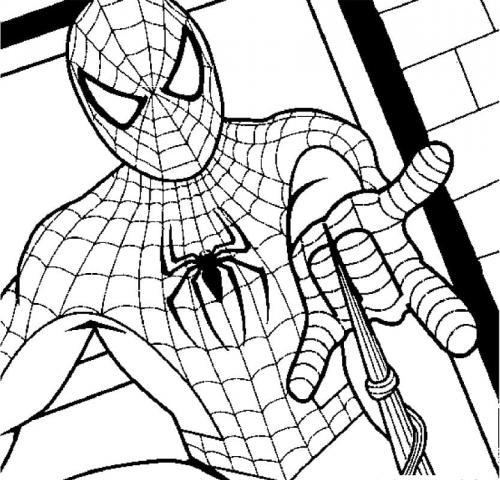 disegni da colorare spiderman