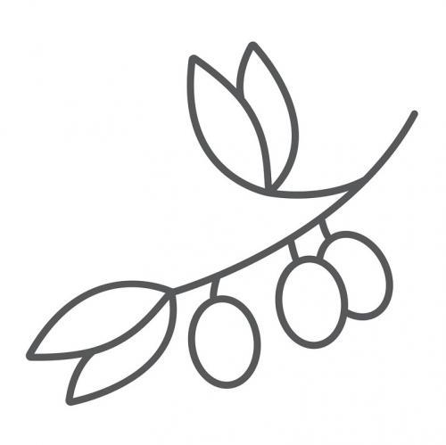 ramo di ulivo stilizzato