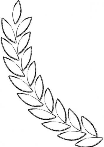 ramo ulivo stilizzato