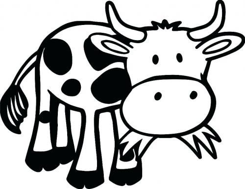 mucca simpatica