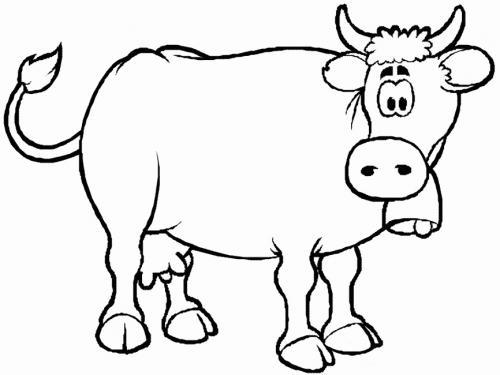 mucca con campanaccio