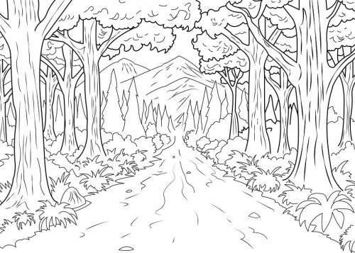 disegno foresta