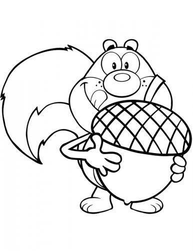 disegni da stampare scoiattoli