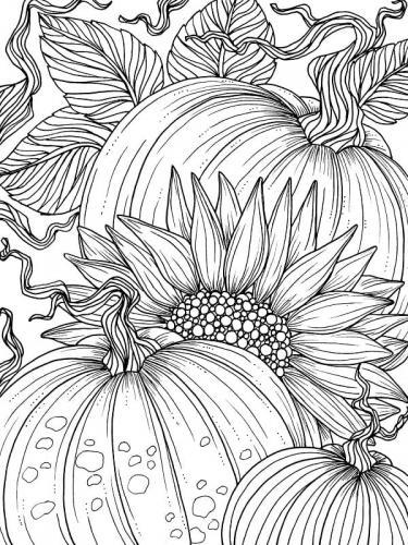 disegno girasole e zucca