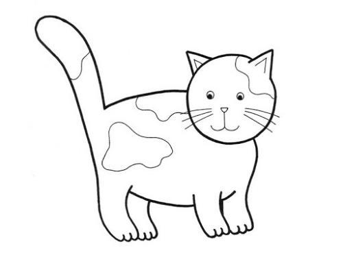 disegni dei gatti