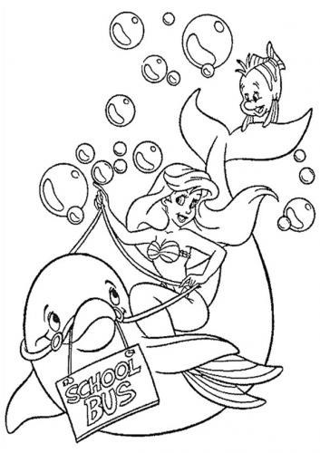 disegni delfini