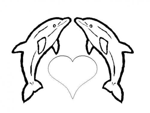 disegni delfino da stampare e colorare