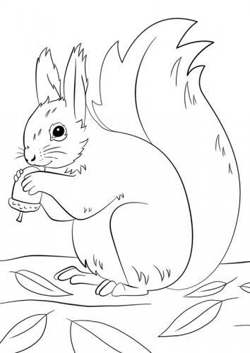 disegni di animali con le foglie