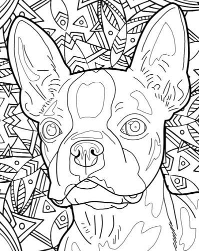 disegni di cani