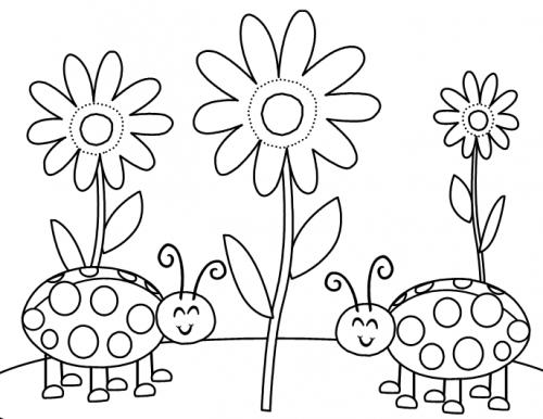 disegni di coccinella