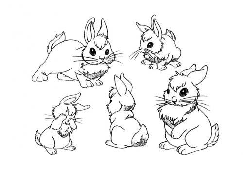 Disegni di coniglietti