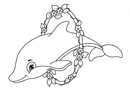 disegni di delfini