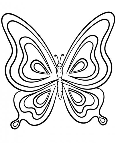 disegni di farfalle