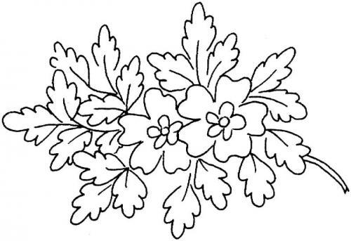 disegni di fiori e foglie