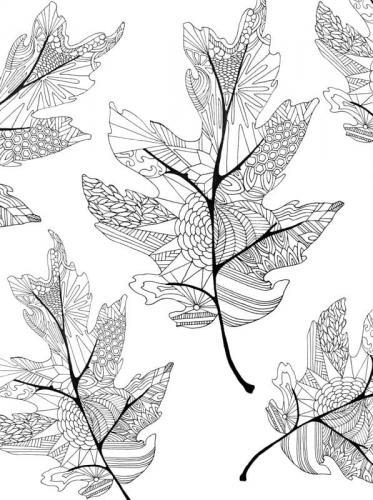 disegni di foglie d'Autunno da colorare