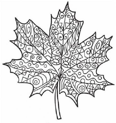 disegni di foglie d'autunno