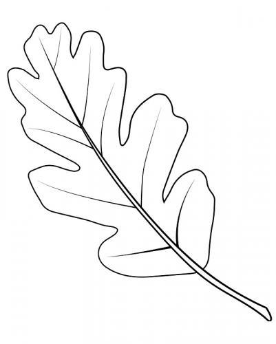 disegni di foglie da colorare