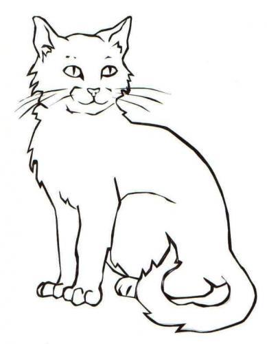 disegni di gatti