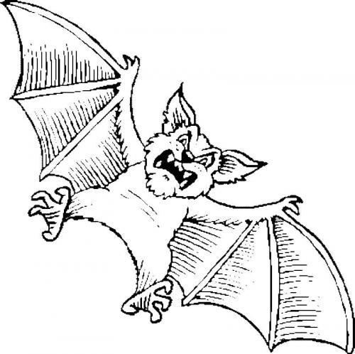 pipistrello spaventoso