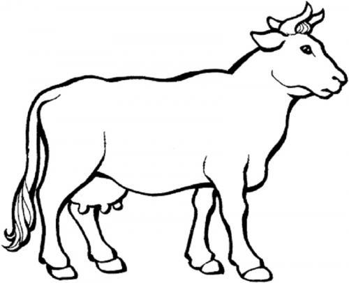 disegno di mucca