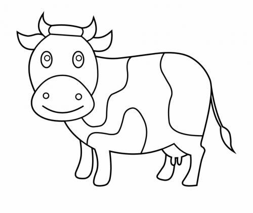 mucca sorridente