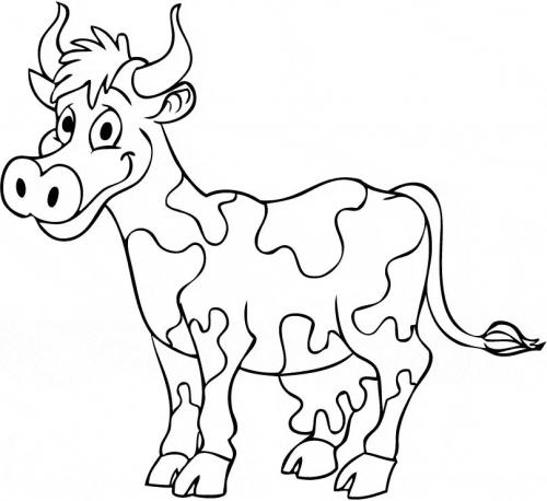 immagine mucca che ride